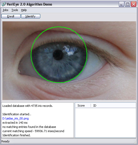 Eye iris identification algorithm demo