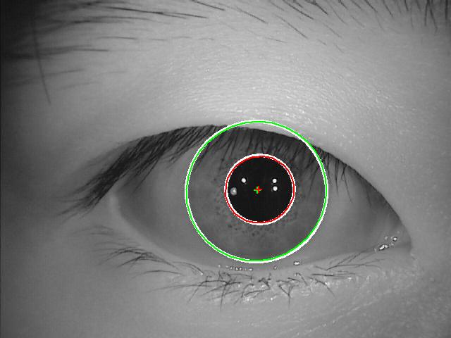 VeriEye eye iris identification technology, algorithm and