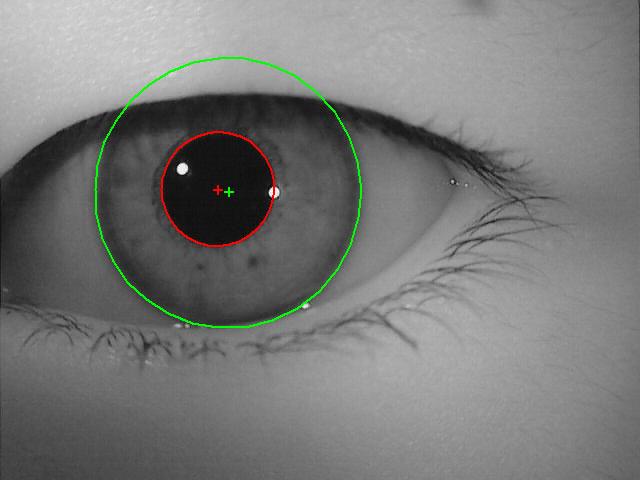 VeriEye eye iris identification technology, algorithm and ...